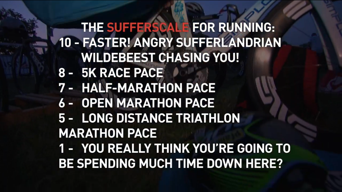 The Sufferfest – Chrysalis review and video giveaway | A-Bear Racing